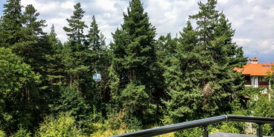 Апартамент с видом на лес Pine Trees