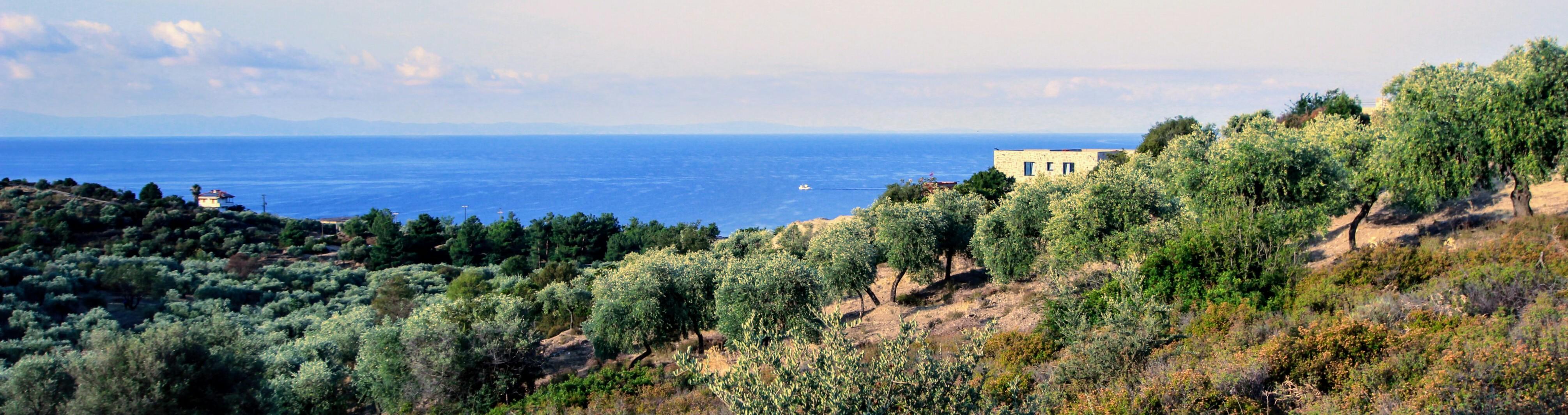 Villa Thassos Greece
